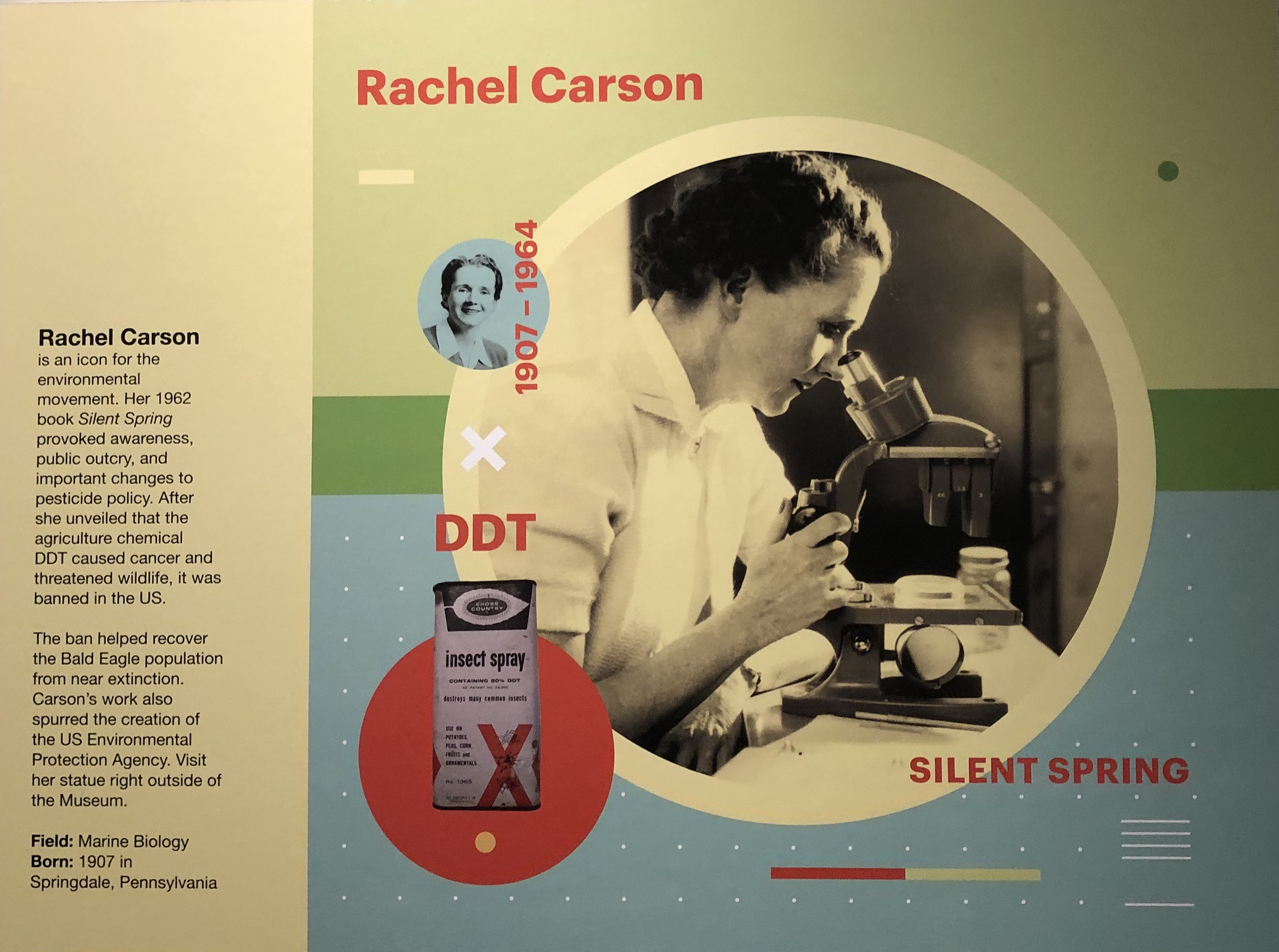 "Figure 3. ""Rachel Carson"" poster, NCNMS, 2019. Photo by the author."