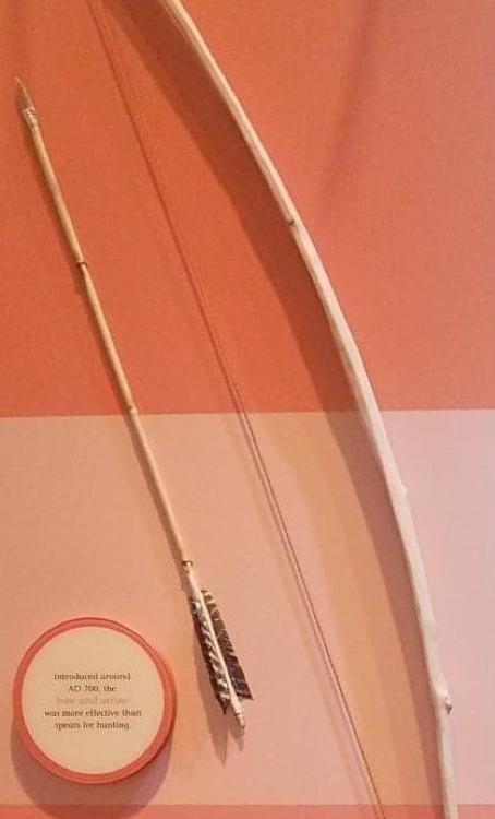 Figure 4. Bow and arrow, Museum of Alabama.